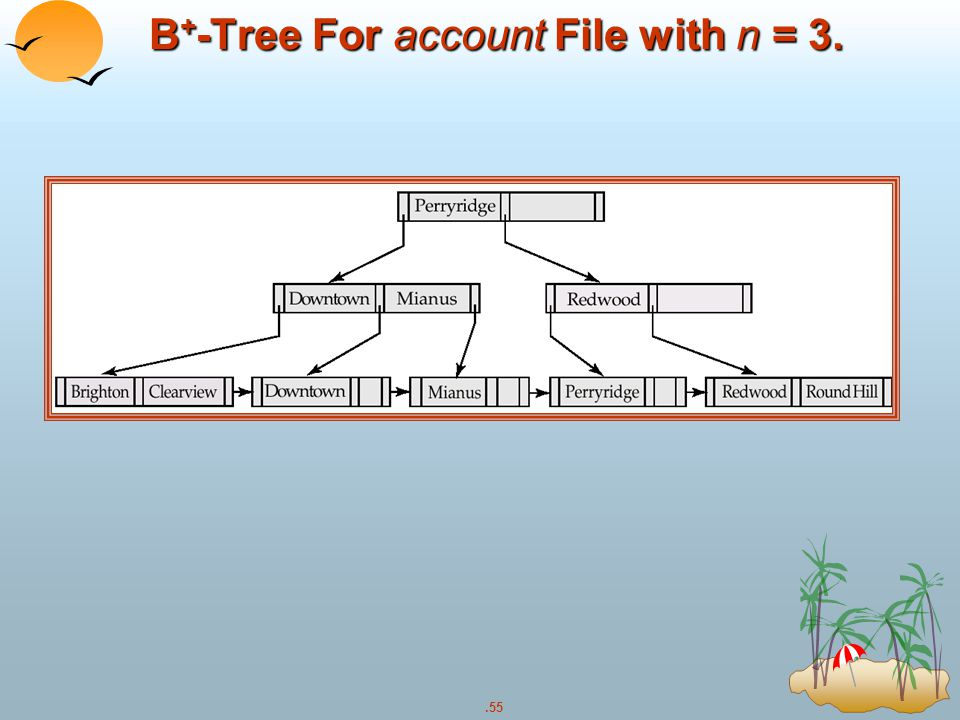 .55 B + -Tree For account File with n = 3.