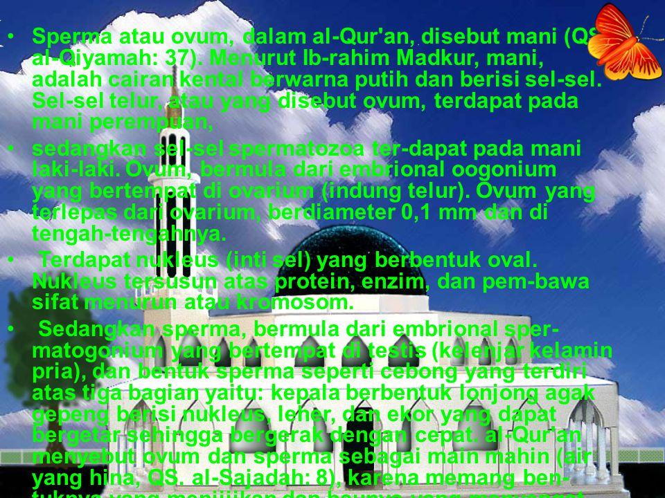 Sperma atau ovum, dalam al-Qur'an, disebut mani (QS. al-Qiyamah: 37). Menurut Ib-rahim Madkur, mani, adalah cairan kental berwarna putih dan berisi se