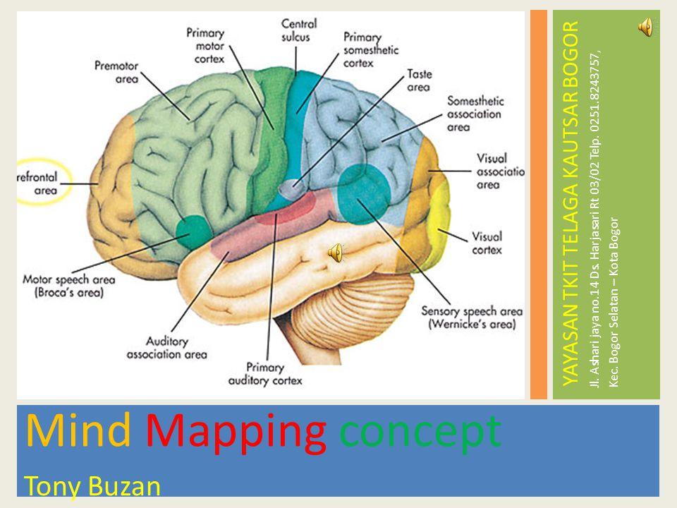 Mind Mapping concept Tony Buzan YAYASAN TKIT TELAGA KAUTSAR BOGOR Jl. Ashari jaya no.14 Ds. Harjasari Rt 03/02 Telp. 0251.8243757, Kec. Bogor Selatan