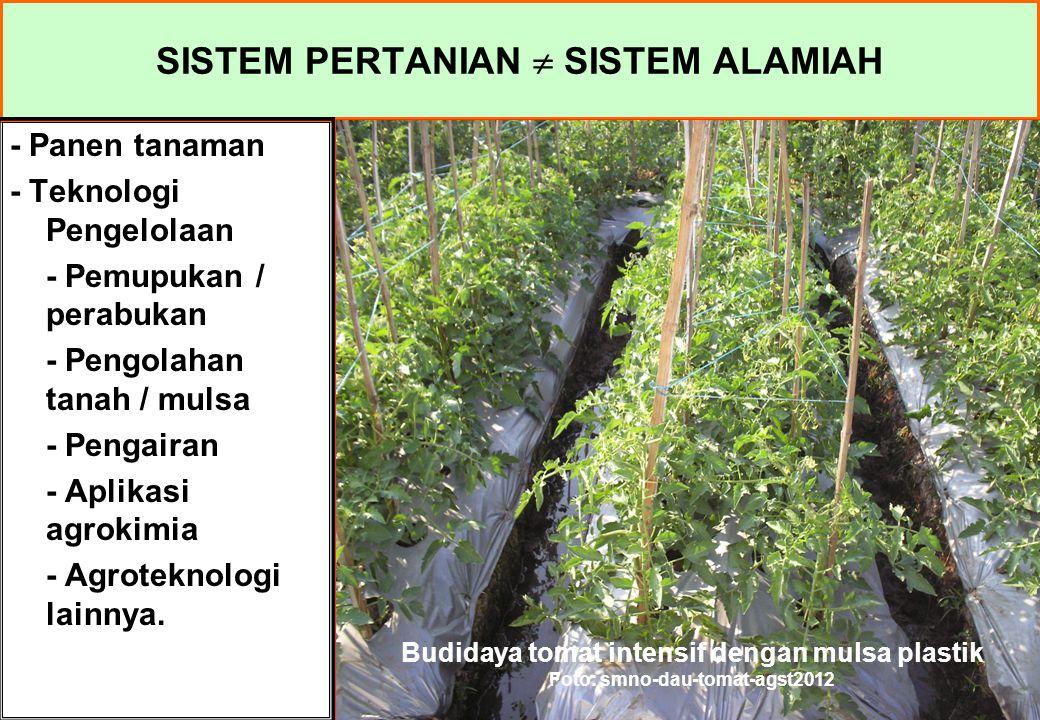 SISTEM PERTANIAN  SISTEM ALAMIAH - Panen tanaman - Teknologi Pengelolaan - Pemupukan / perabukan - Pengolahan tanah / mulsa - Pengairan - Aplikasi ag