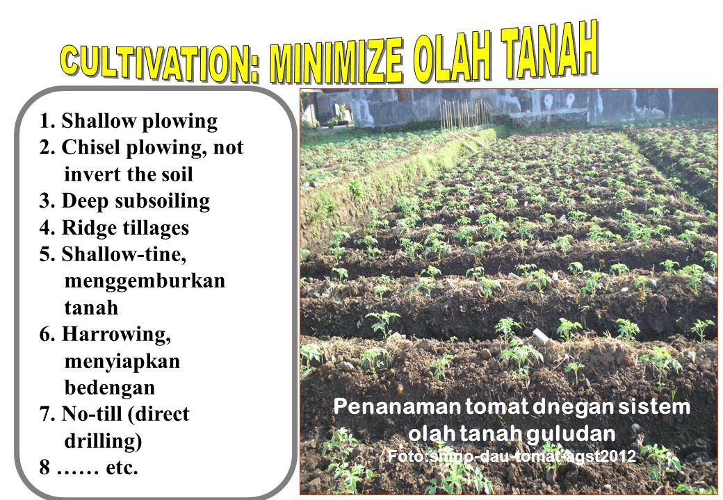 1.Pupuk mempengaruhi pertumbuhan gulma = tanaman 2.