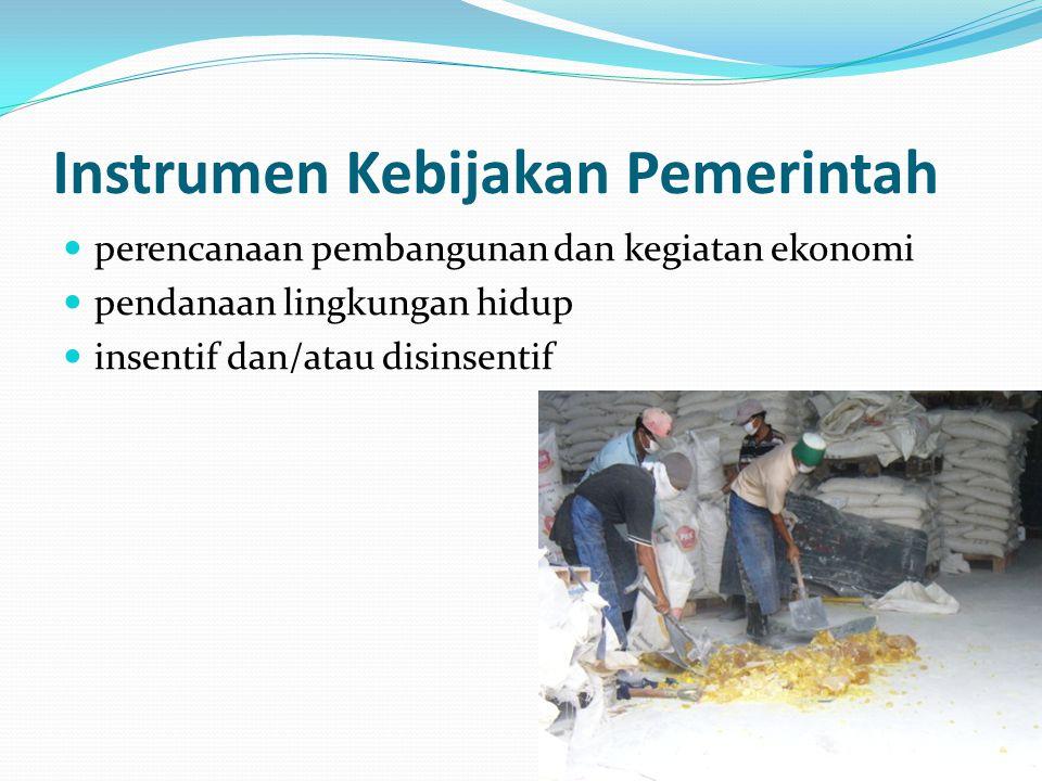 Instrumen Kebijakan Pemerintah perencanaan pembangunan dan kegiatan ekonomi pendanaan lingkungan hidup insentif dan/atau disinsentif