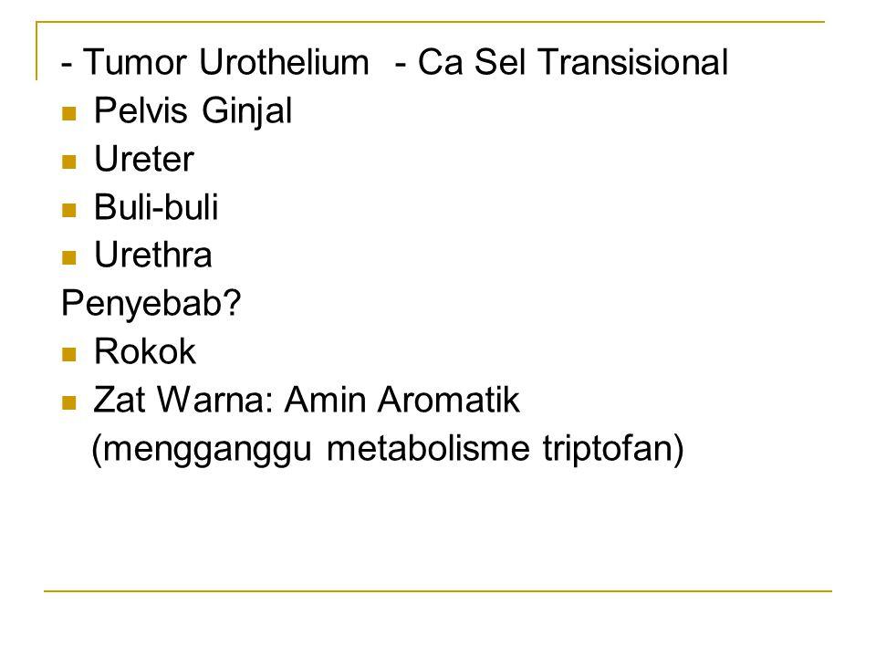 - Tumor Urothelium - Ca Sel Transisional Pelvis Ginjal Ureter Buli-buli Urethra Penyebab? Rokok Zat Warna: Amin Aromatik (mengganggu metabolisme tript