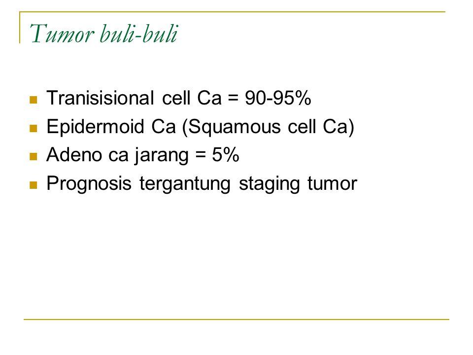 Tumor buli-buli Tranisisional cell Ca = 90-95% Epidermoid Ca (Squamous cell Ca) Adeno ca jarang = 5% Prognosis tergantung staging tumor