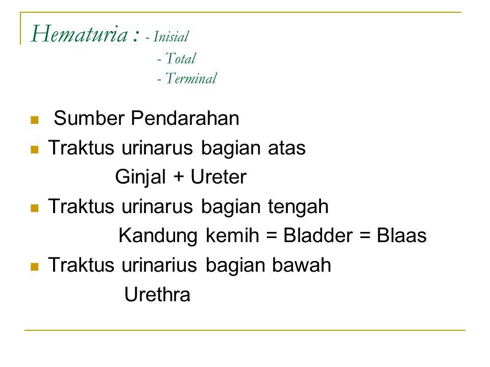 Hematuria : - Inisial - Total - Terminal Sumber Pendarahan Traktus urinarus bagian atas Ginjal + Ureter Traktus urinarus bagian tengah Kandung kemih =