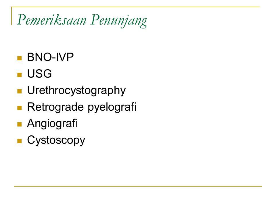 Pemeriksaan Penunjang BNO-IVP USG Urethrocystography Retrograde pyelografi Angiografi Cystoscopy