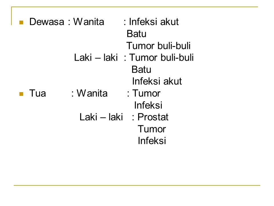Dewasa : Wanita : Infeksi akut Batu Tumor buli-buli Laki – laki : Tumor buli-buli Batu Infeksi akut Tua : Wanita : Tumor Infeksi Laki – laki : Prostat Tumor Infeksi