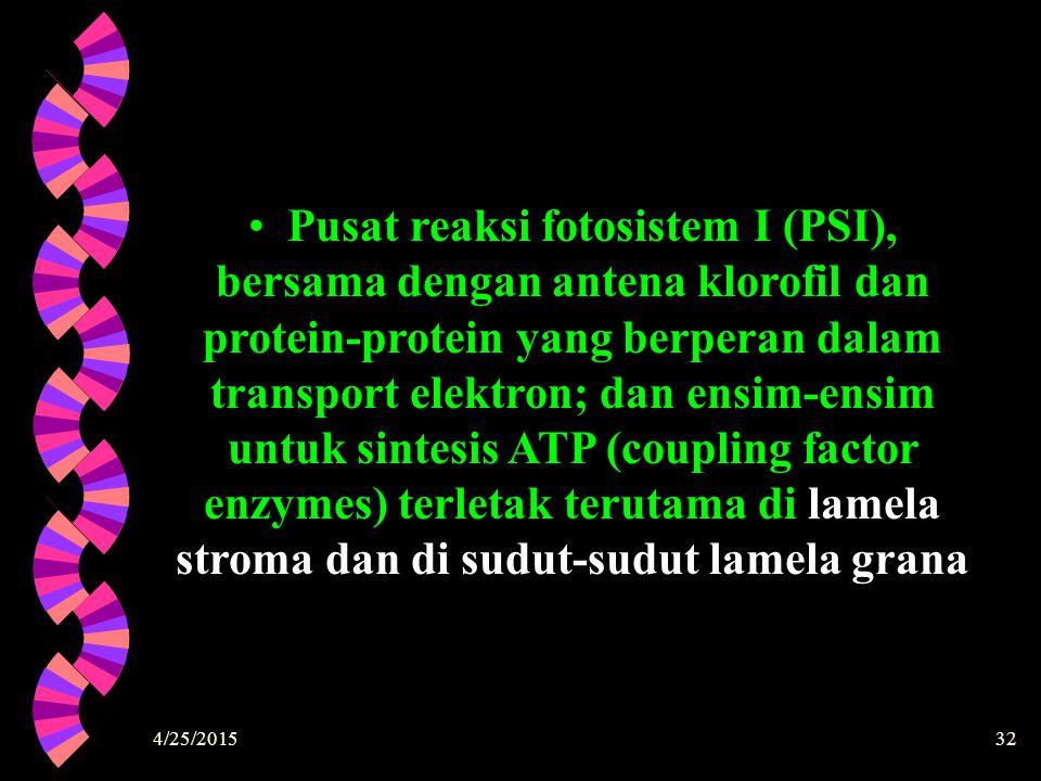 4/25/201532 Pusat reaksi fotosistem I (PSI), bersama dengan antena klorofil dan protein-protein yang berperan dalam transport elektron; dan ensim-ensi