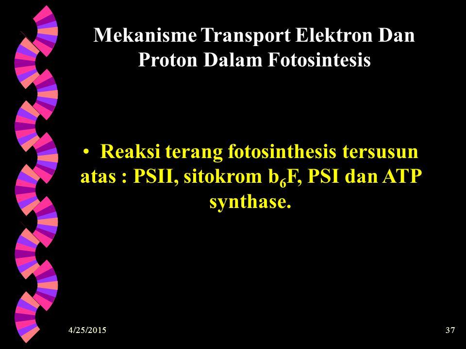 4/25/201537 Mekanisme Transport Elektron Dan Proton Dalam Fotosintesis Reaksi terang fotosinthesis tersusun atas : PSII, sitokrom b 6 F, PSI dan ATP s