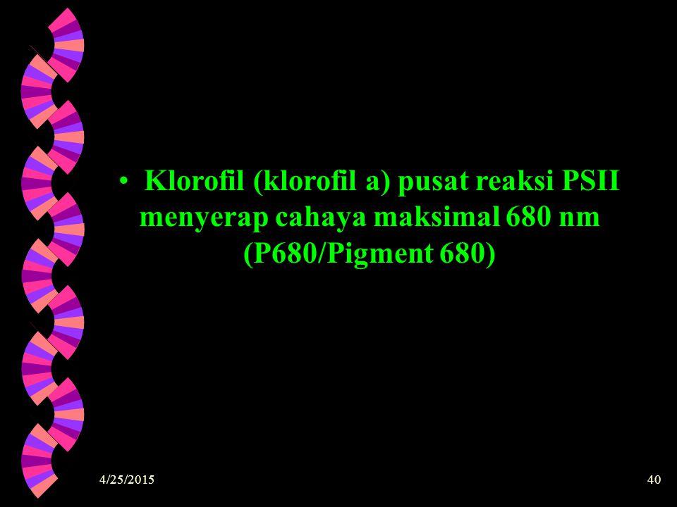 4/25/201540 Klorofil (klorofil a) pusat reaksi PSII menyerap cahaya maksimal 680 nm (P680/Pigment 680)