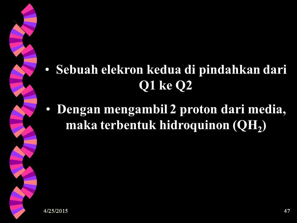 4/25/201547 Sebuah elekron kedua di pindahkan dari Q1 ke Q2 Dengan mengambil 2 proton dari media, maka terbentuk hidroquinon (QH 2 )