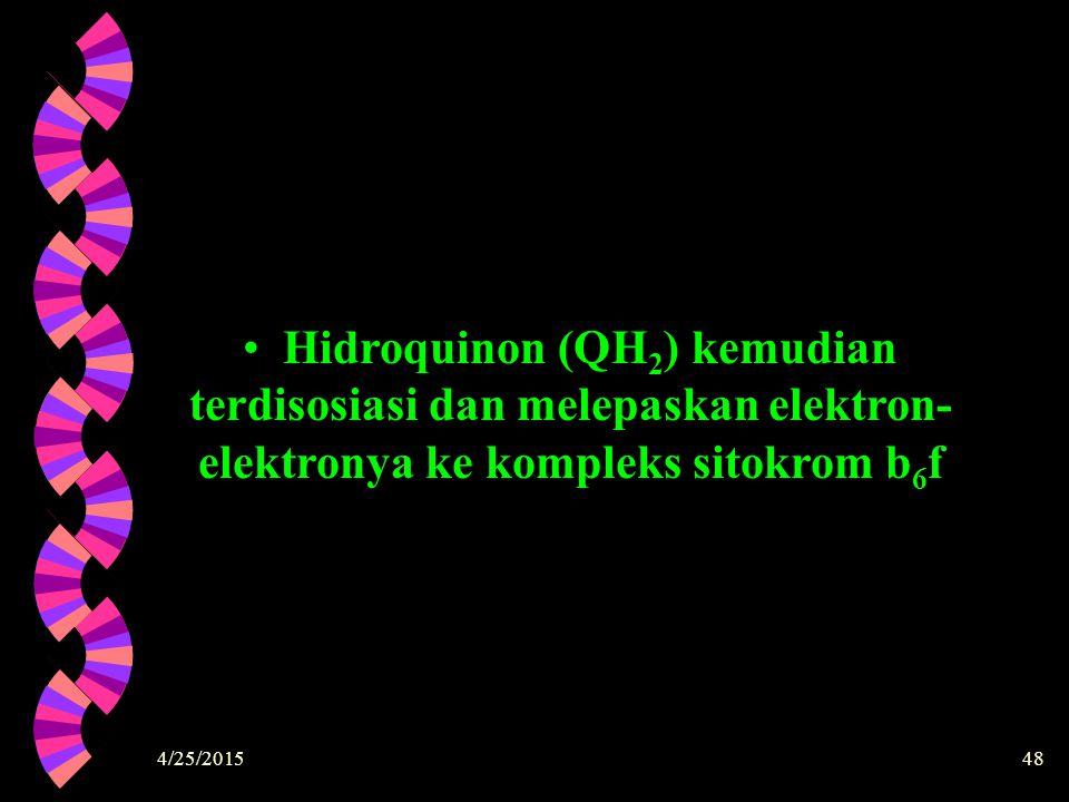 4/25/201548 Hidroquinon (QH 2 ) kemudian terdisosiasi dan melepaskan elektron- elektronya ke kompleks sitokrom b 6 f