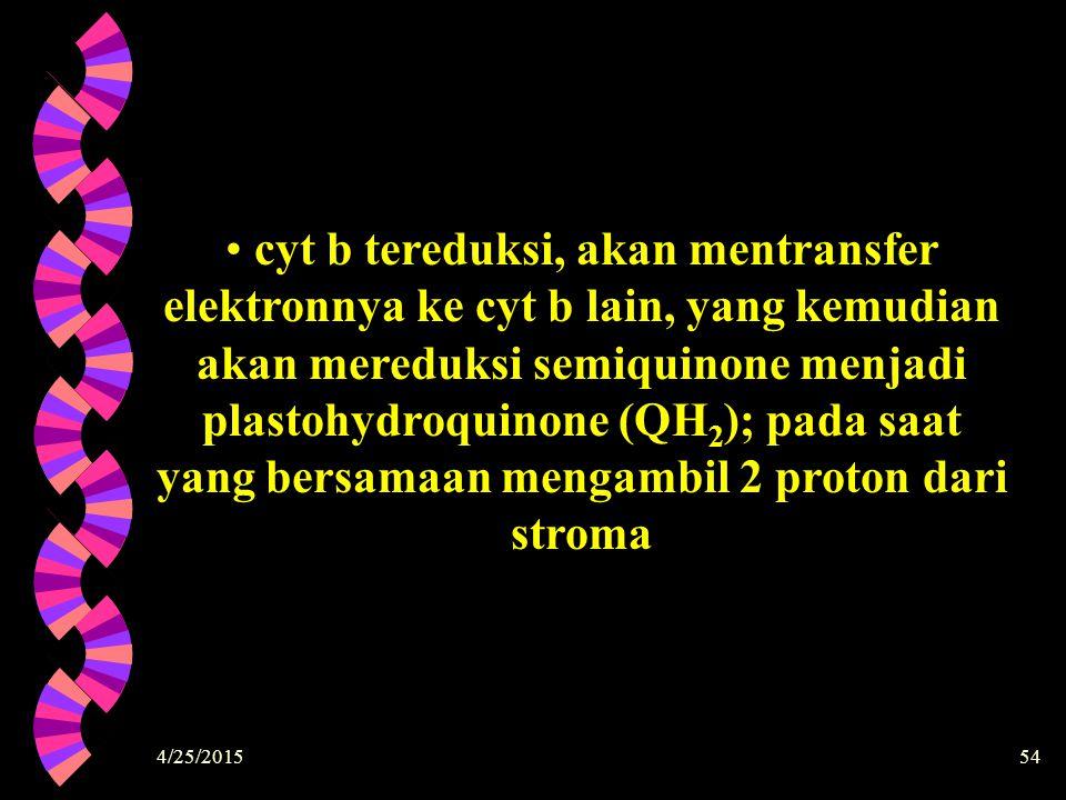 4/25/201554 cyt b tereduksi, akan mentransfer elektronnya ke cyt b lain, yang kemudian akan mereduksi semiquinone menjadi plastohydroquinone (QH 2 );