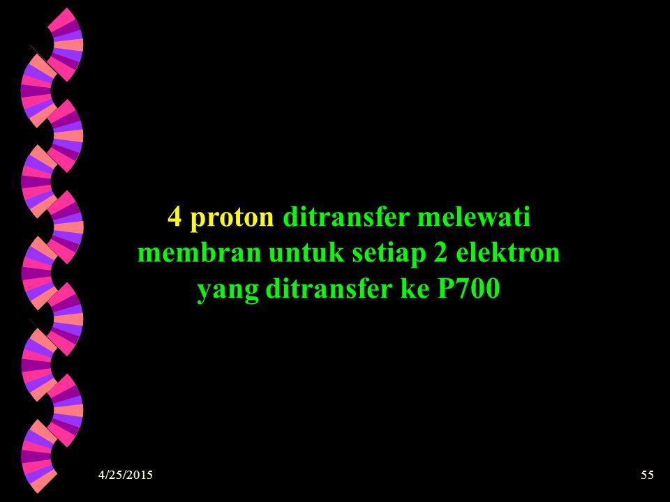 4/25/201555 4 proton ditransfer melewati membran untuk setiap 2 elektron yang ditransfer ke P700