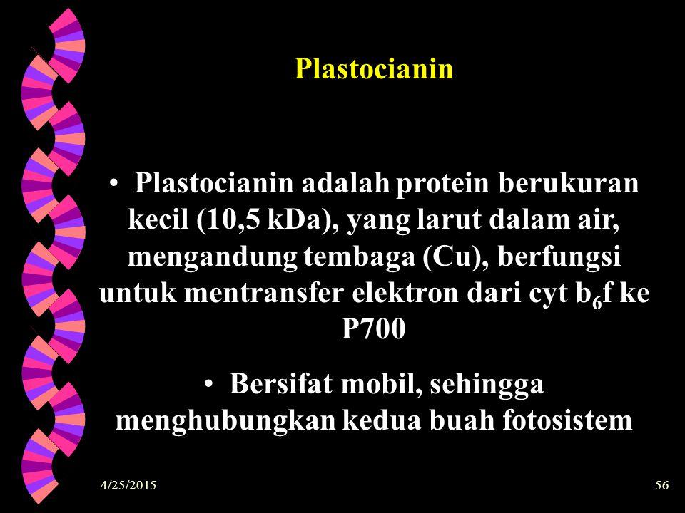 4/25/201556 Plastocianin adalah protein berukuran kecil (10,5 kDa), yang larut dalam air, mengandung tembaga (Cu), berfungsi untuk mentransfer elektro