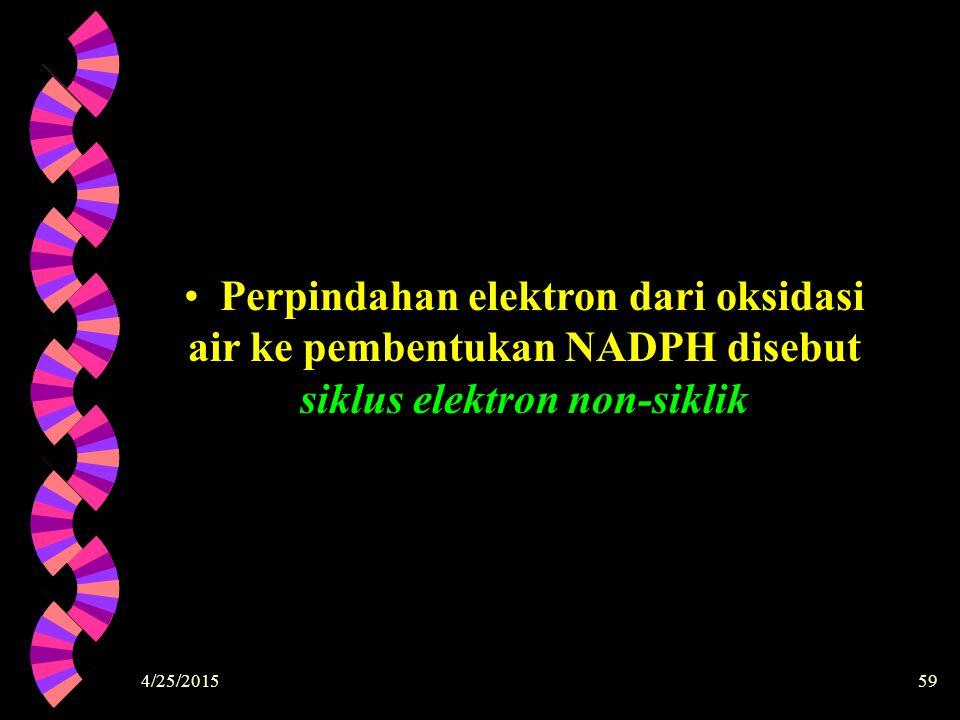 4/25/201559 Perpindahan elektron dari oksidasi air ke pembentukan NADPH disebut siklus elektron non-siklik