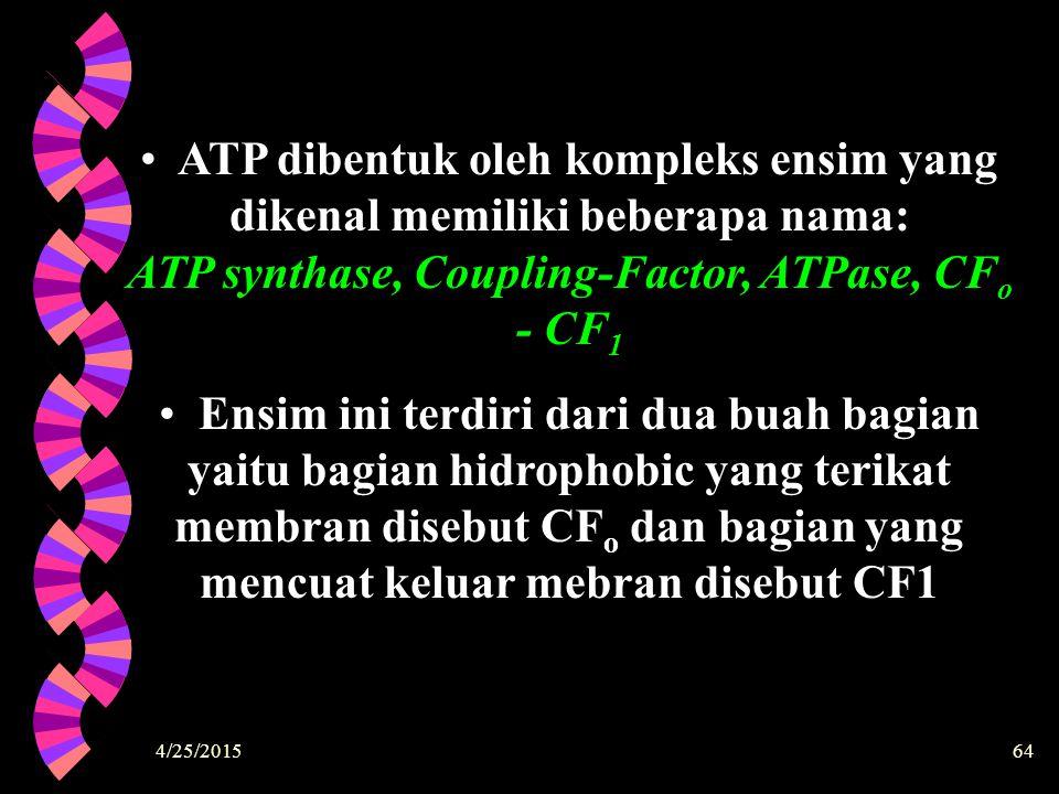 4/25/201564 ATP dibentuk oleh kompleks ensim yang dikenal memiliki beberapa nama: ATP synthase, Coupling-Factor, ATPase, CF o - CF 1 Ensim ini terdiri