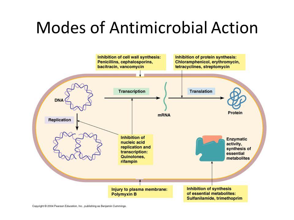 Mekanisme Kerja Antibiotik 1.Menghambat sintesis asam nukleat (cont: Rifampicin; Chloroquine) 2.Menhambat sintesis protein (cont: Tetracyclines; Chlor