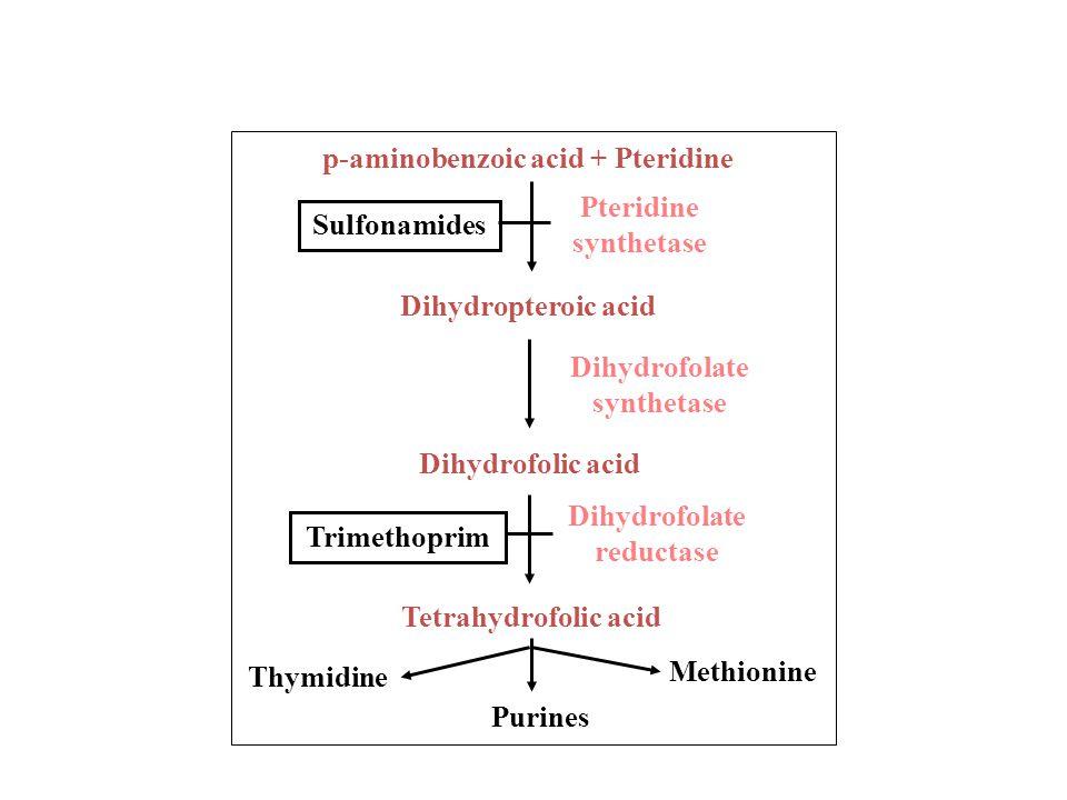 2. Inhibitor sintesis asam nukleat Menghambat pada proses replikasi atau transkripsi Sulfonamid & trimethoprim memblok sintesis enzim yang diperlukan