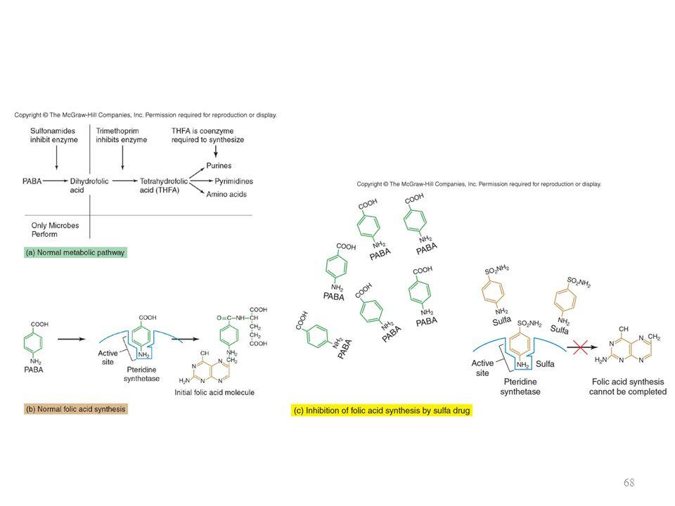 p-aminobenzoic acid + Pteridine Dihydropteroic acid Dihydrofolic acid Tetrahydrofolic acid Pteridine synthetase Dihydrofolate synthetase Dihydrofolate