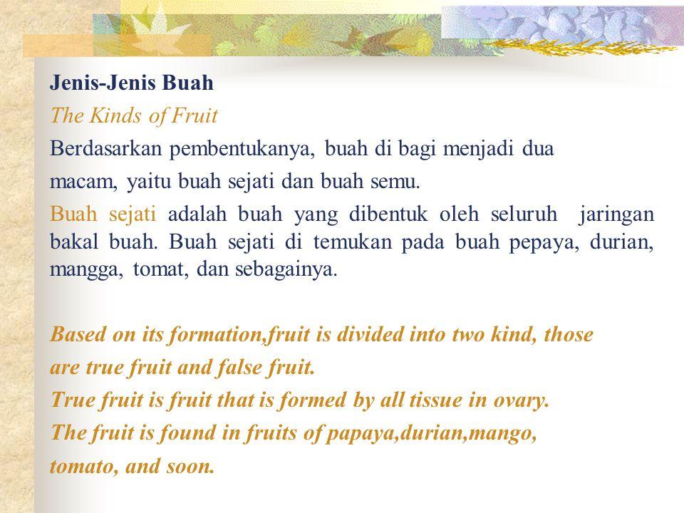 Jenis-Jenis Buah The Kinds of Fruit Berdasarkan pembentukanya, buah di bagi menjadi dua macam, yaitu buah sejati dan buah semu. Buah sejati adalah bua