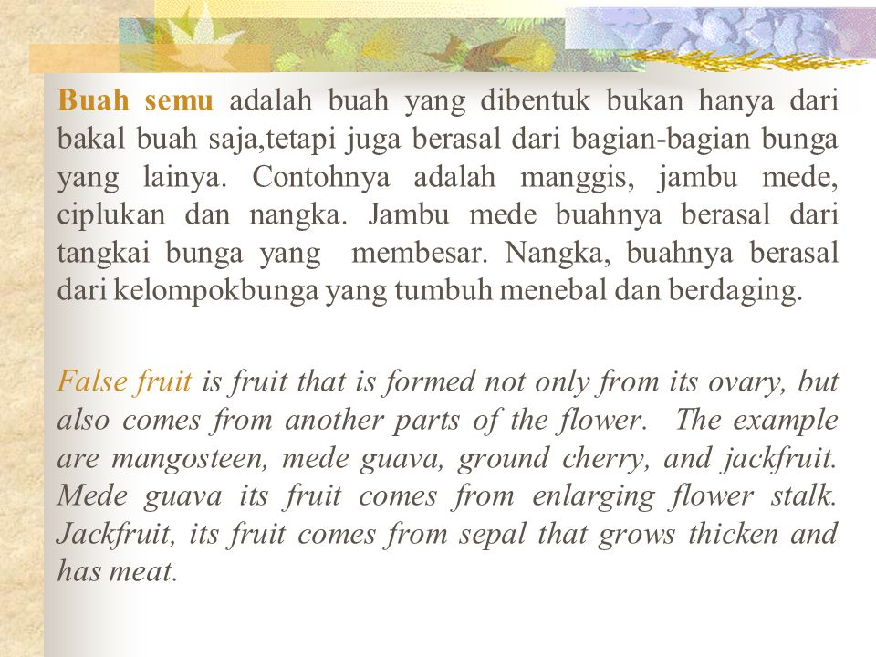 Buah semu adalah buah yang dibentuk bukan hanya dari bakal buah saja,tetapi juga berasal dari bagian-bagian bunga yang lainya. Contohnya adalah manggi