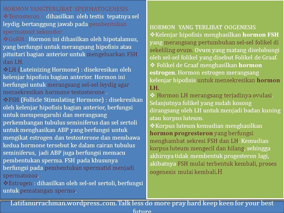 Latifanurrachman.wordpress..com. Talk less do more pray hard keep keen for your best future