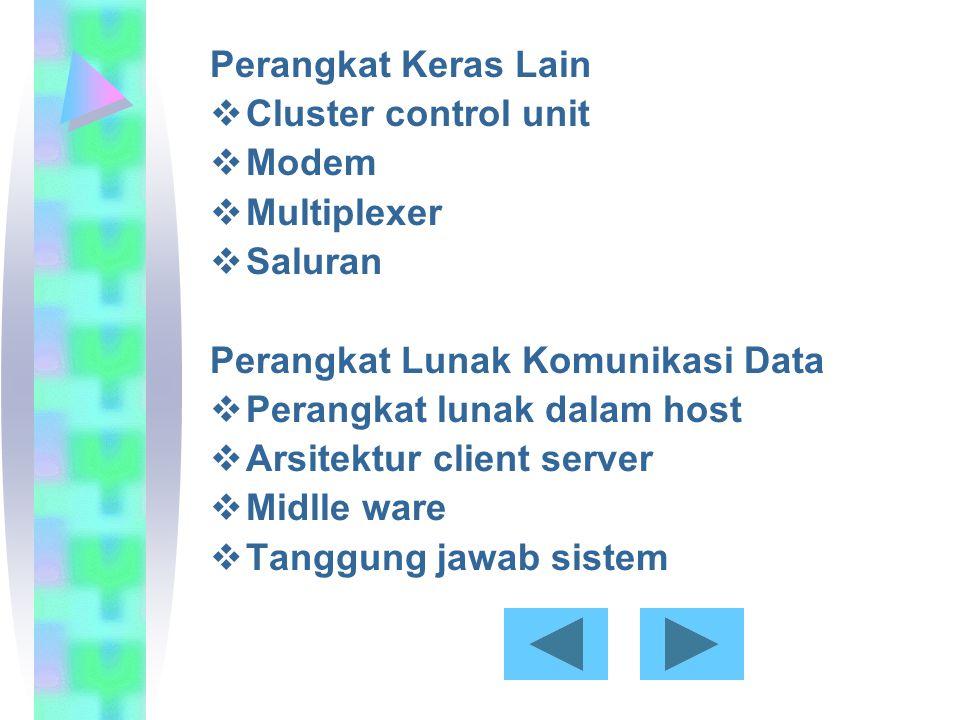 Perangkat Keras Lain  Cluster control unit  Modem  Multiplexer  Saluran Perangkat Lunak Komunikasi Data  Perangkat lunak dalam host  Arsitektur client server  Midlle ware  Tanggung jawab sistem
