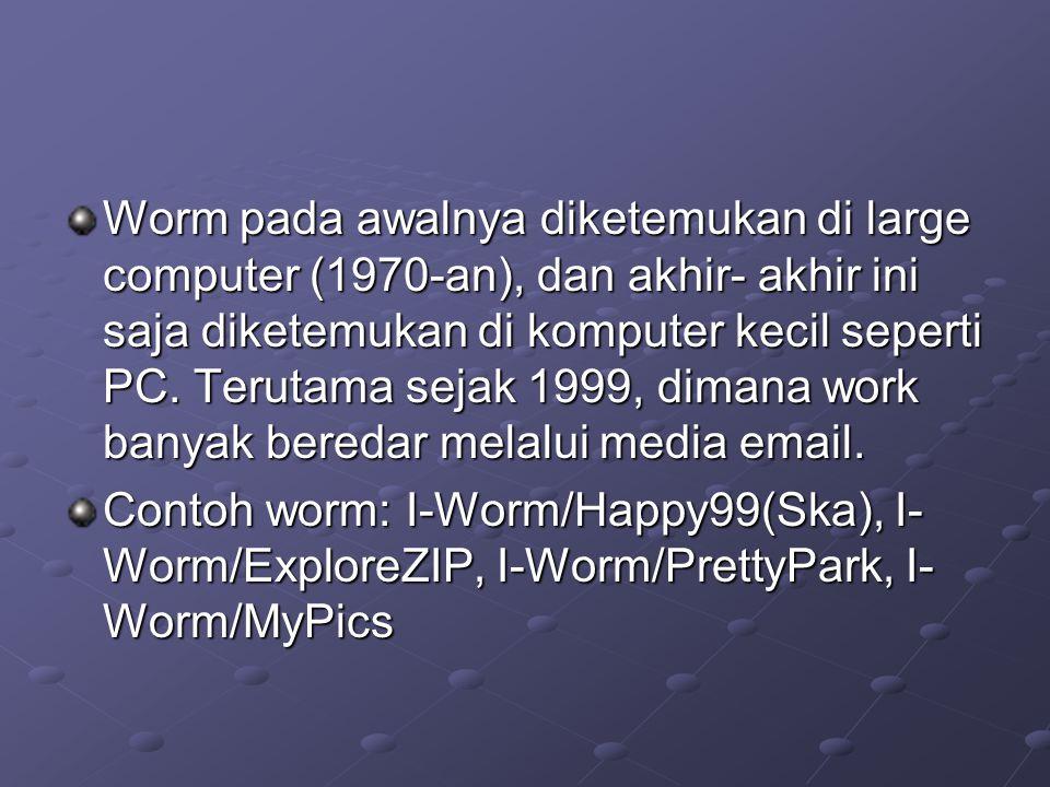 Worm pada awalnya diketemukan di large computer (1970-an), dan akhir- akhir ini saja diketemukan di komputer kecil seperti PC. Terutama sejak 1999, di