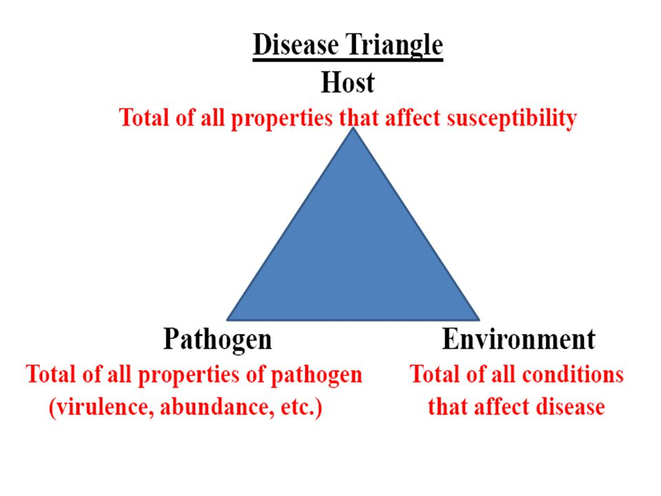 Vanderplank's Equivalence Theorem Effects of host, pathogen and environment can be translated into terms of the rate parameter of an epidemic Changes in any component has an equivalent effect on disease More-less susceptible host All affect More-less favorable environment amount of More-less aggressive pathogen disease
