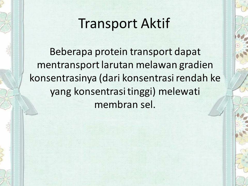 Transport Aktif Beberapa protein transport dapat mentransport larutan melawan gradien konsentrasinya (dari konsentrasi rendah ke yang konsentrasi ting
