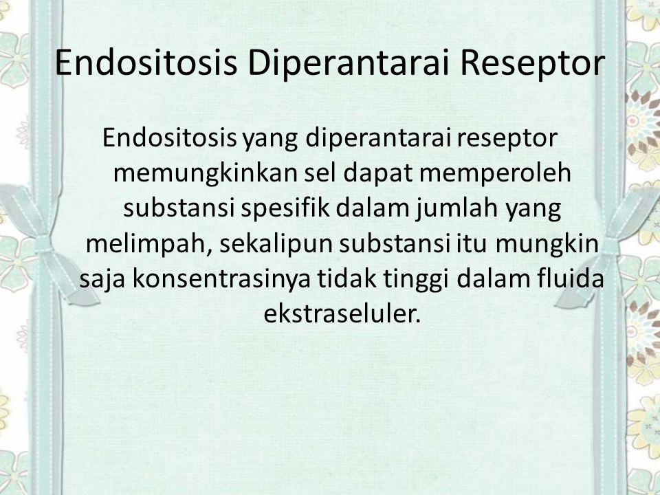 Endositosis Diperantarai Reseptor Endositosis yang diperantarai reseptor memungkinkan sel dapat memperoleh substansi spesifik dalam jumlah yang melimp