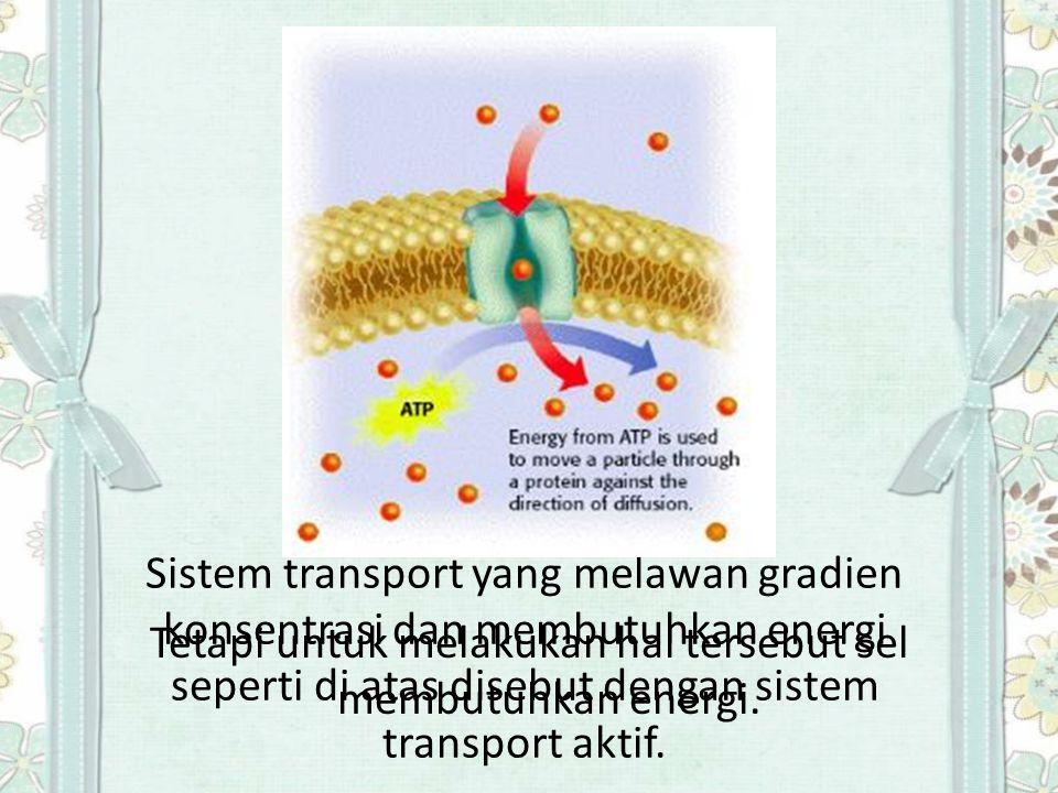 Salah satu protein transport yang bekerja dengan sistem trasport aktif adalah pompa natrium kalium (sodium potassium pump) yang menukar ion Na + dengan K + melewati membran plasma dari sel hewan.
