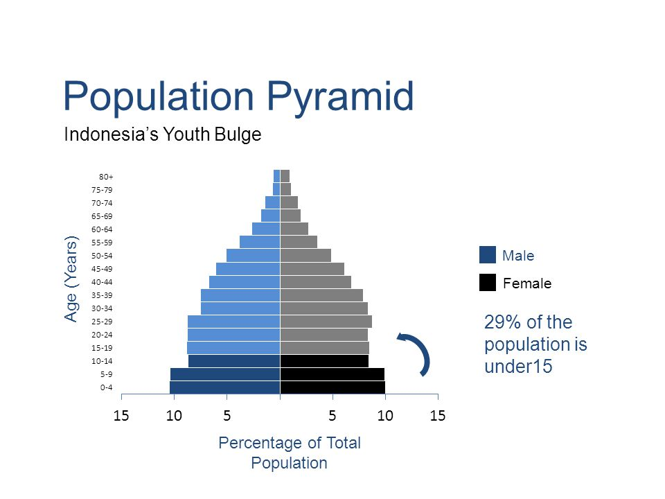 Population Pyramid Indonesia's Youth Bulge Age (Years) 29% of the population is under15 Male Female Percentage of Total Population