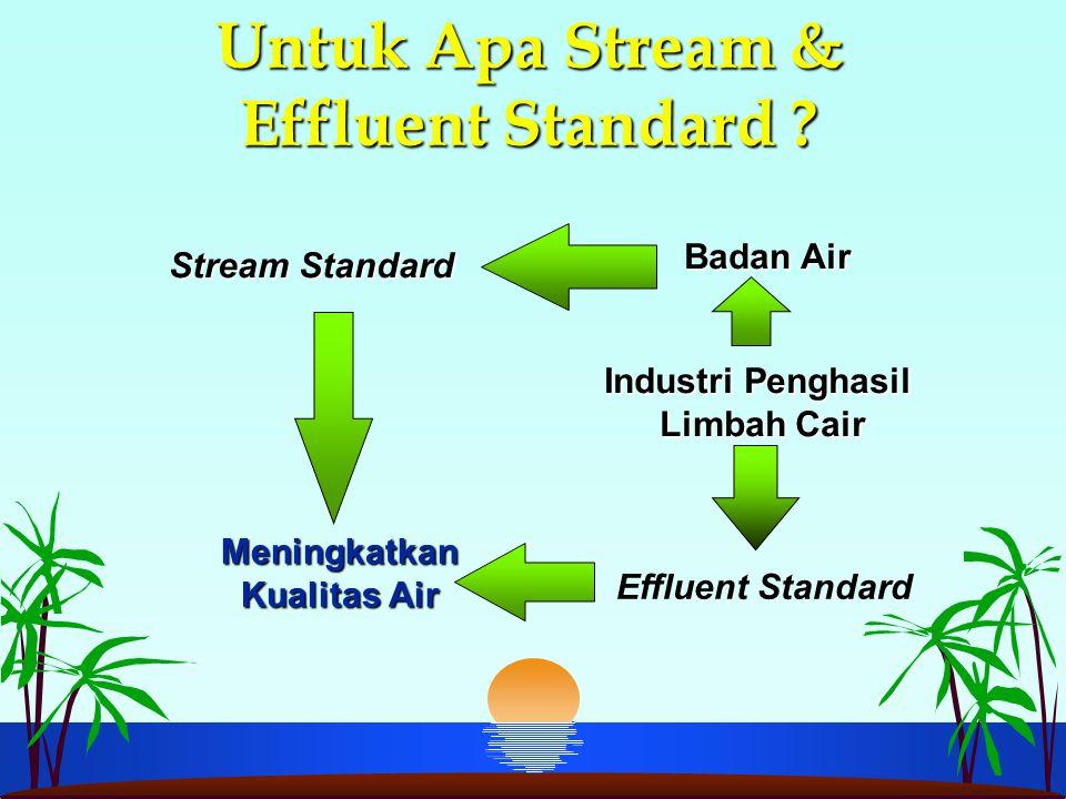 Untuk Apa Stream & Effluent Standard ? Badan Air Stream Standard Meningkatkan Kualitas Air Meningkatkan Kualitas Air Effluent Standard Industri Pengha