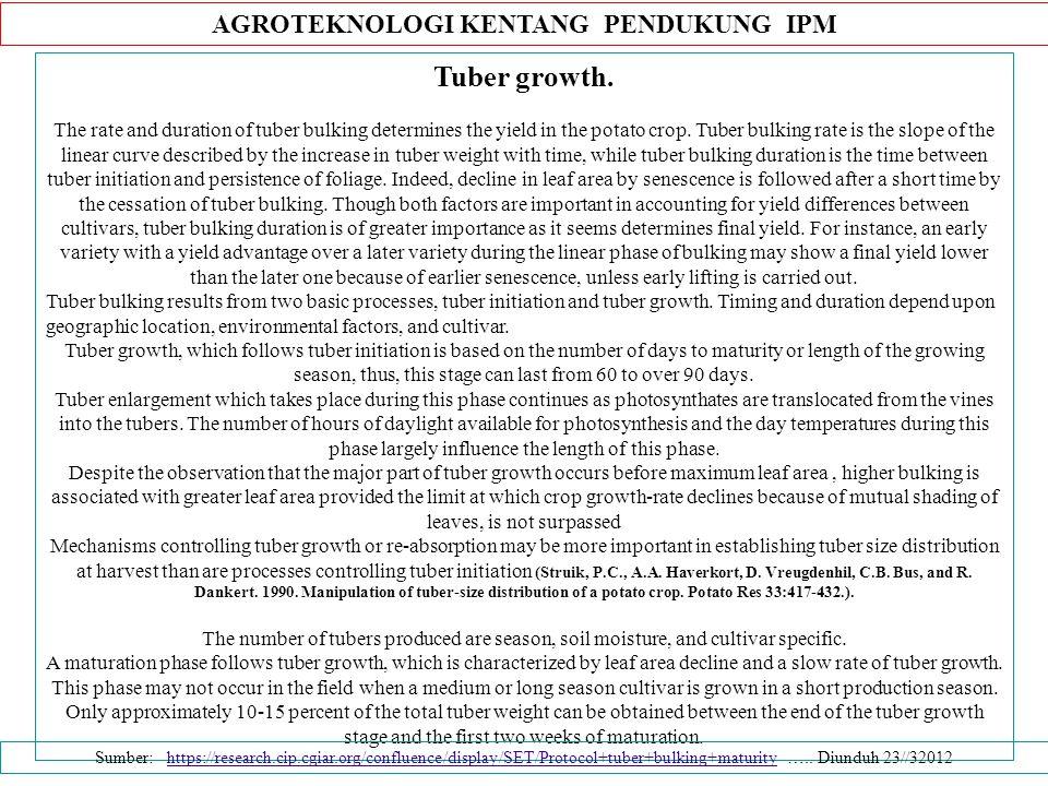 AGROTEKNOLOGI KENTANG PENDUKUNG IPM Tuber growth.