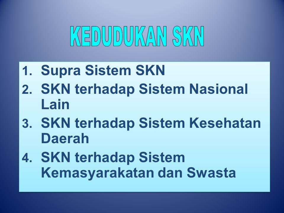 1. Supra Sistem SKN 2. SKN terhadap Sistem Nasional Lain 3. SKN terhadap Sistem Kesehatan Daerah 4. SKN terhadap Sistem Kemasyarakatan dan Swasta 1. S