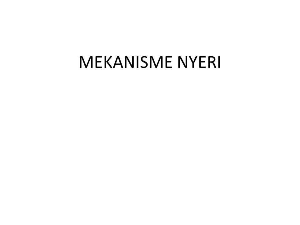 MEKANISME NYERI