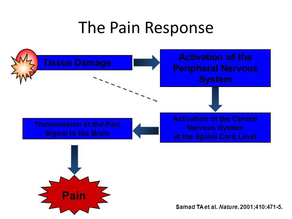 Pendahuluan Nyeri dibedakan atas: Nyeri Neuropatik: Nyeri yang disebabkan oleh lesi (kerusakan) sistem saraf.