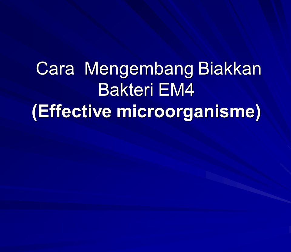 Cara Mengembang Biakkan Bakteri EM4 (Effective microorganisme)