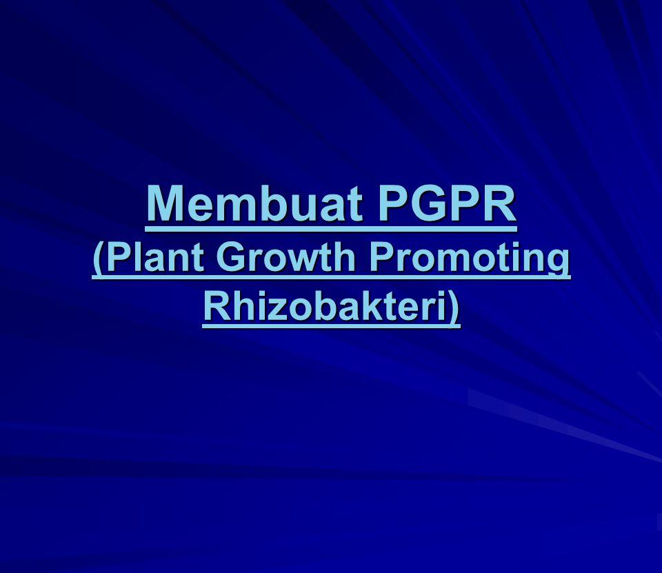 Membuat PGPR (Plant Growth Promoting Rhizobakteri) Membuat PGPR (Plant Growth Promoting Rhizobakteri)