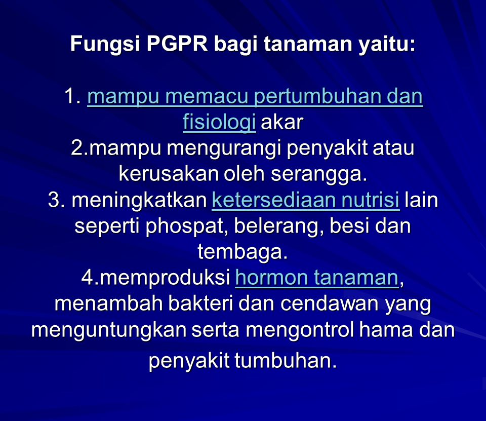 Fungsi PGPR bagi tanaman yaitu: 1. mampu memacu pertumbuhan dan fisiologi akar 2.mampu mengurangi penyakit atau kerusakan oleh serangga. 3. meningkatk