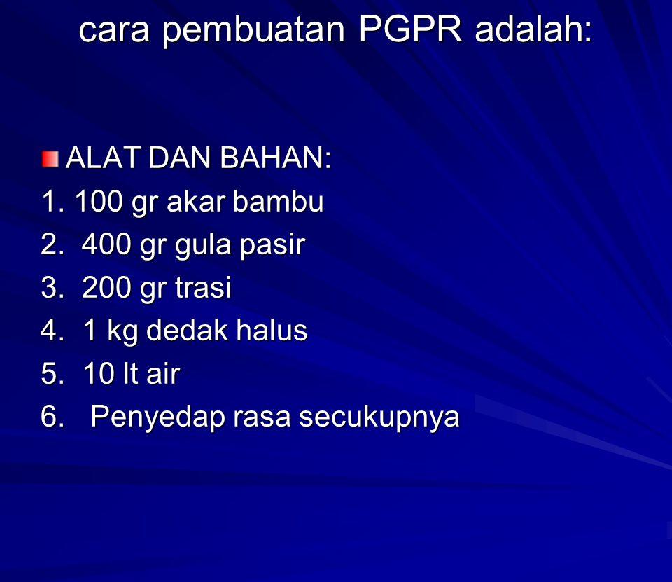 cara pembuatan PGPR adalah: ALAT DAN BAHAN: 1. 100 gr akar bambu 2. 400 gr gula pasir 3. 200 gr trasi 4. 1 kg dedak halus 5. 10 lt air 6. Penyedap ras