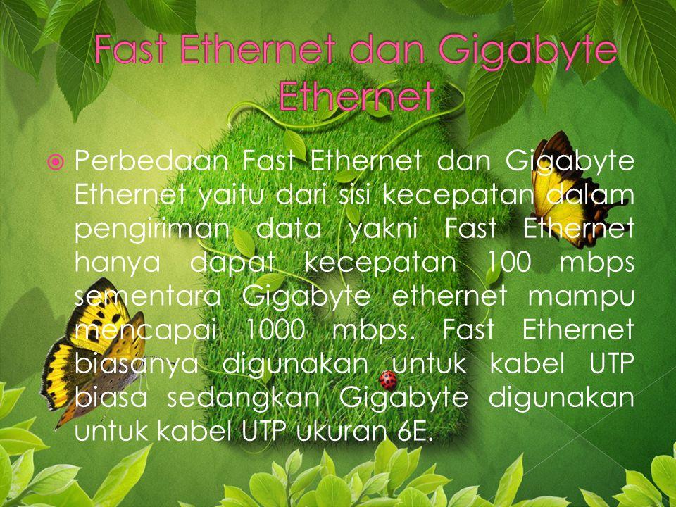  Perbedaan Fast Ethernet dan Gigabyte Ethernet yaitu dari sisi kecepatan dalam pengiriman data yakni Fast Ethernet hanya dapat kecepatan 100 mbps sementara Gigabyte ethernet mampu mencapai 1000 mbps.