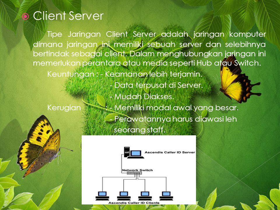  Client Server Tipe Jaringan Client Server adalah jaringan komputer dimana jaringan ini memiliki sebuah server dan selebihnya bertindak sebagai client.