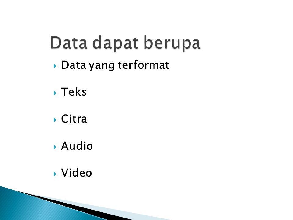  Data yang terformat  Teks  Citra  Audio  Video
