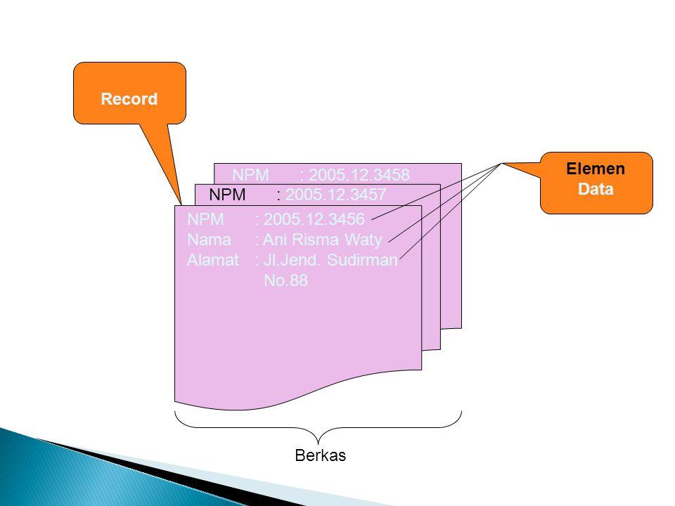 NPM: 2005.12.3456 Nama: Ani Risma Waty Alamat: Jl.Jend. Sudirman No.88 NPM: 2005.12.3457 NPM: 2005.12.3458 Record Elemen Data Berkas