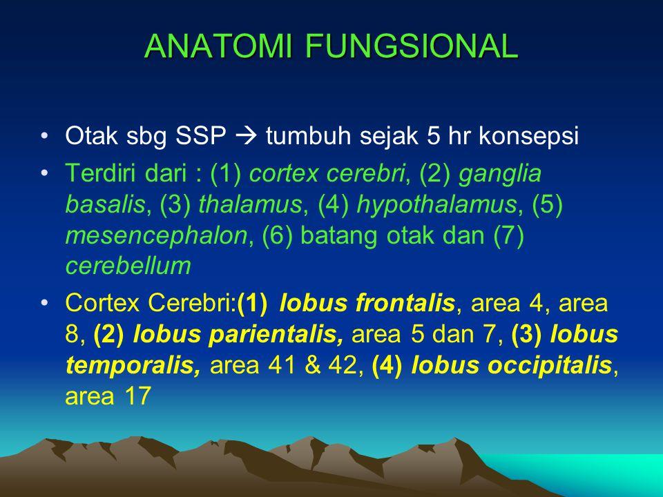 ANATOMI FUNGSIONAL Otak sbg SSP  tumbuh sejak 5 hr konsepsi Terdiri dari : (1) cortex cerebri, (2) ganglia basalis, (3) thalamus, (4) hypothalamus, (
