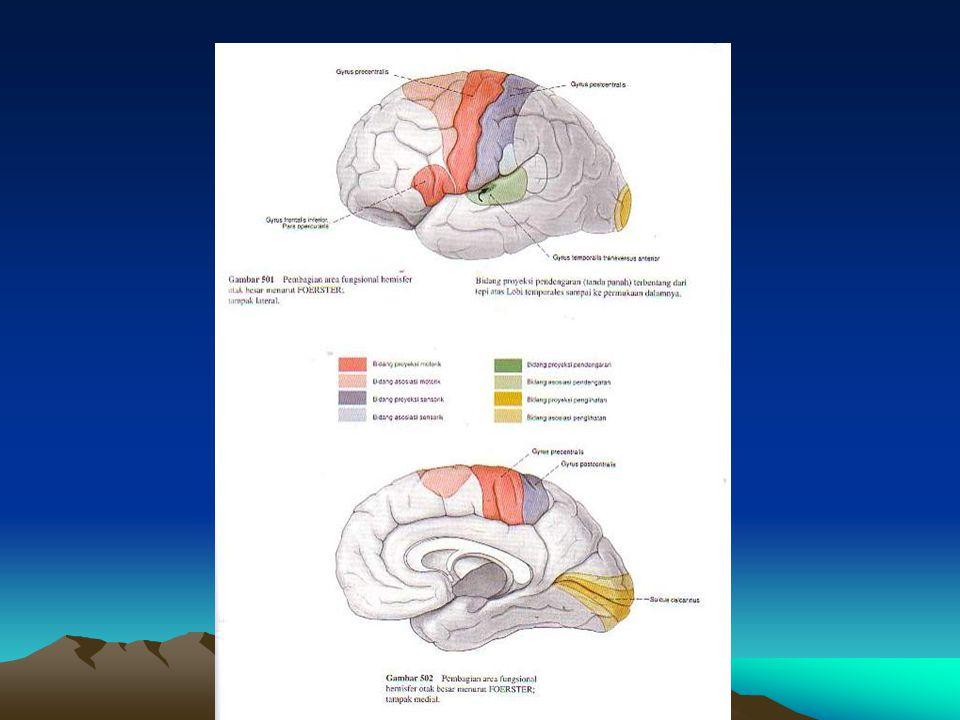 Fascilitasi rotasi badan & supporting reaction ke samping