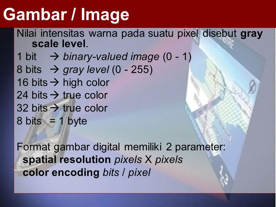 Nilai intensitas warna pada suatu pixel disebut gray scale level. 1 bit  binary-valued image (0 - 1) 8 bits  gray level (0 - 255) 16 bits  high col